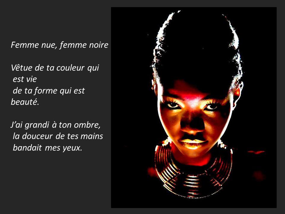 Poeme femme noire senghor plumencre